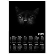 Календарь Black Cat A4 2012